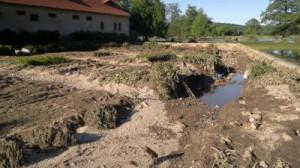 Kräutergarten nach der Flut